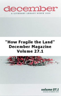How Fragile the Land